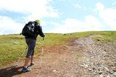 在山中徒步旅行的夏天. — 图库照片
