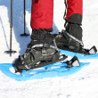 Winter hiking in snowshoes. — Stock Photo #30879333