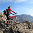 Stock Photo: Mountain bike