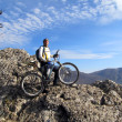 Mountain bike — Stock Photo #41276933