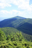 Carpathian mountains, Ukraine. — Stock Photo