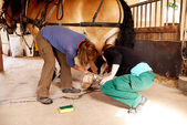 Two woman working on a horseshoe — Stock Photo