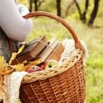 Closeup image picnic basket in woman hand — Stock Photo