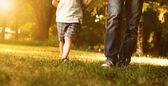Otec a syn, kráčející po trávníku v parku — Stock fotografie
