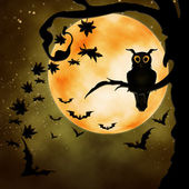 Halloween illustration with owl — Stock Photo