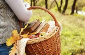 Closeup-bild-picknick-korb in der hand der frau — Stockfoto