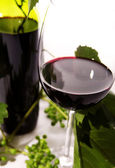 Red wine into the glass — Stock Photo