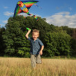 Happy plaing boy with kite — Stock Photo #14564719