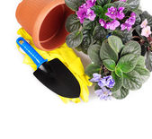 Violet flowers with garden tools — Stock Photo