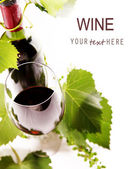 Wine Background 1 — Stock Photo