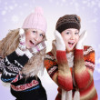 Stock Photo: Two pretty laughing surprised girls in winter clothes