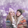 Two happy beautiful girls winter portrait — Stock Photo #17361661