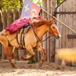 A skilled horse rider shows a risk trick — Stock Photo