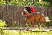 一个熟练的马骑士 — 图库照片
