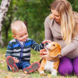 Pregnant mother with her little son and pet on walk — Stock Photo