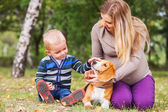 Pregnant mother with her little son and pet on walk — Stockfoto
