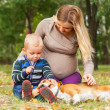 Stock Photo: Pregnant mother with little son playing with pet in park