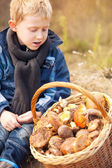 Little mashroom picker — Stock Photo