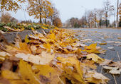 Autumn in the city — Stockfoto