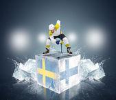 Sweden vs Finland — Stockfoto