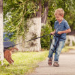 Little boy walking his puppy — Stock Photo