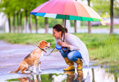 Woman with his beagle dog — Foto de Stock