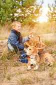 Boy and beagle dog on the glade — Stock Photo