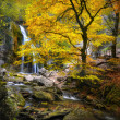Waterfall in the autumn-3 — Stock Photo