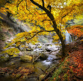 Waterfall in the autumn-4 — Stock Photo