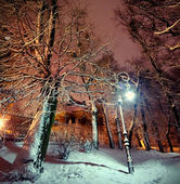 Lanterna no parque à noite — Foto Stock