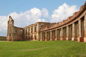 Ruins of old palace — Stock Photo