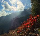 Ridges, cliffs, open space — Stock Photo