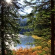 Vrbicke pleso — Stock Photo