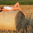 Girl at cornfield — Stock Photo
