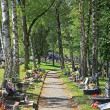 Cemetery in town Ruzomberok, Slovakia — Stock Photo