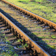 Rails — Stock Photo #34599023