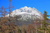 Gerlachovsky stit - peak in High Tatras, Slovakia — Stock Photo