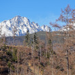 High Tatras mountains, Slovakia — Stock Photo