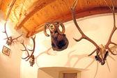 Pribylina - interior of manor-house — Stock Photo