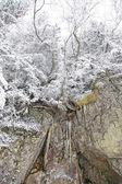 Snowy nature in High Tatras, Slovakia — Stock Photo