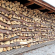 Stock Photo: Wood chunks, Slovakia
