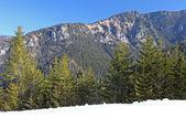 Low Tatras mountains, Slovakia  — Stock Photo