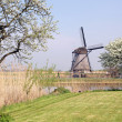 Windmills at Kinderdijk, Netherlands — Stock Photo