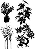 Silhouettes of plants — Stock Vector