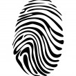 Fingerprint — Stock Vector #20070149