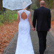 Stock Photo: Nuptial walk