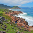 Rocky green coastline — Stock Photo