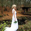 Stock Photo: Autumm Bride