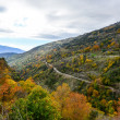 Sierra Nevada Autumn tones — Stock Photo