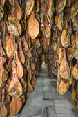 The Jamon corridor — Stock Photo